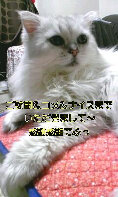年末のごあいさつ3.JPG