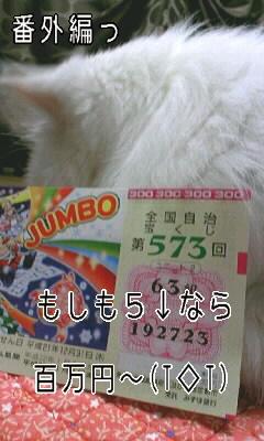 100103_番外編.JPG