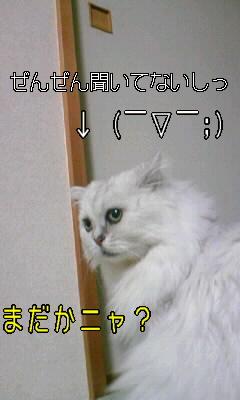 100101_フスマ5.JPG