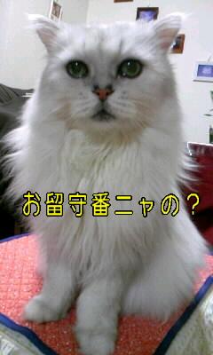 100109_カラ4.JPG